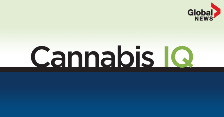 cannabisiq_newsletter_fb-feature-image