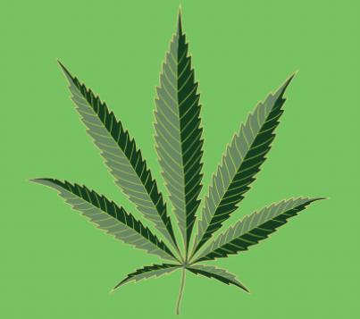 leaf cro[