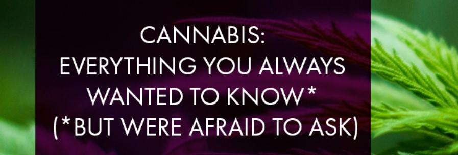 Toronto Lawyers Association - Cannabis